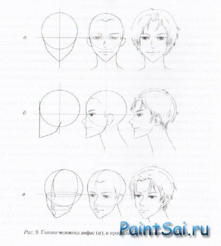 Как рисовать Голову и лицо аниме
